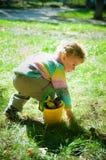 Kleiner Junge setzt Kastanien Lizenzfreie Stockfotografie