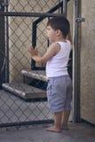 Kleiner Junge Stellung in der in voller Länge und Schauen durch die Stangen Stockfotos