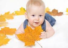 Kleiner Junge und Ahornblatt lizenzfreies stockfoto