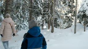 Kleiner Junge und Frau gehen in Winterkoniferenwaldansicht von der Rückseite stock footage