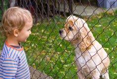 Kleiner Junge und Hund hinter Zaun lizenzfreie stockbilder