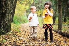 Kleiner Junge und kleines Mädchen, die Äpfel im Wald isst Stockfotografie