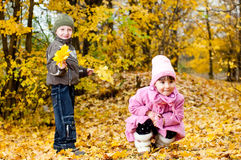 Kleiner Junge und Mädchen spielen in einem Park im Herbst Stockfotos