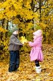 Kleiner Junge und Mädchen spielen in einem Park im Herbst Stockbild