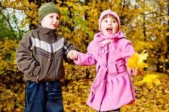 Kleiner Junge und Mädchen spielen in einem Park im Herbst Lizenzfreie Stockbilder