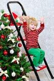 Kleiner Junge und Weihnachtsbaum Lizenzfreies Stockfoto