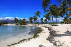 Kleiner karibischer Strand Stockbilder