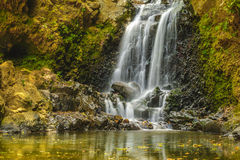 Kleiner Kaskaden-Wasserfall Stockbild