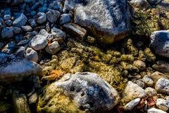 Kleiner klarer Rocky Brook oder Nebenfluss in Texas stockfotos