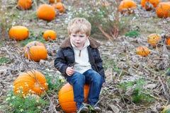 Kleiner Kleinkindjunge auf Kürbisfleckenfeld Lizenzfreies Stockbild