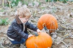 Kleiner Kleinkindjunge auf Kürbisfleckenfeld Lizenzfreies Stockfoto