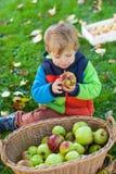 Kleiner Kleinkindjunge, der Apfel isst Stockfotografie