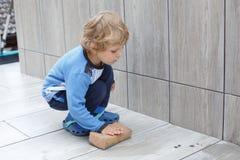 Kleiner Kleinkindjunge, der bei der Erneuerung des Hauses hilft Stockbild