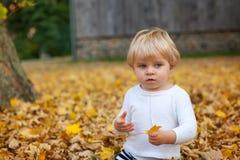 Kleiner Kleinkindjunge, der im Herbstpark spielt Stockbild