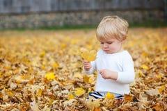 Kleiner Kleinkindjunge, der im Herbstpark spielt Stockfotografie