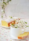 Kleiner Kuchen mit Hüttenkäse Stockbild