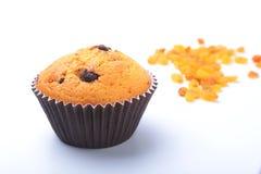 Kleiner Kuchen, Muffin mit Rosinen und Schokolade lokalisiert auf weißem Hintergrund Köstliche selbst gemachte Muffins Beschneidu stockbild