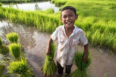 Kleiner lächelnder Jungenlandwirt auf grünen Feldern Stockfotos