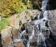 Kleiner laufender Wasserfall Stockfotos
