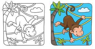 Kleiner lustiger Affe auf lians Lizenzfreies Stockfoto