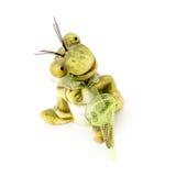 Kleiner lustiger Frosch mit einem Wadenetz lizenzfreies stockbild