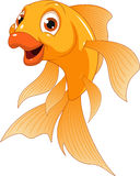 Kleiner lustiger Goldfisch stock abbildung