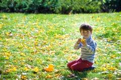 Kleiner lustiger Junge, der auf Gras sitzt Lizenzfreie Stockfotografie