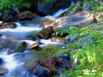 Kleiner Nebenfluss Stockbilder