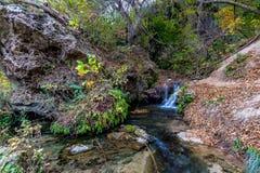 Kleiner Nebenfluss im Wald in Texas lizenzfreies stockbild