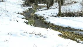 Kleiner Nebenfluss mit Schnee stock video