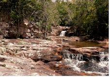 Kleiner Nebenfluss und Wasserfall in einem tropischen Wald lizenzfreies stockbild