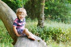 Kleiner netter Kleinkindjunge, der Spaß auf Baum im Wald hat Lizenzfreies Stockfoto
