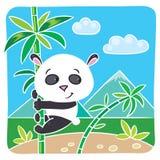 Kleiner Panda auf Bambus Lizenzfreies Stockfoto