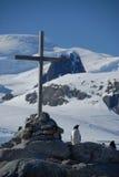 Kleiner Pinguin durch die Seite des christlichen Kreuzes auf dem Ozeanufer Lizenzfreie Stockbilder