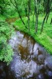 Kleiner ruhiger Fluss Stockbilder