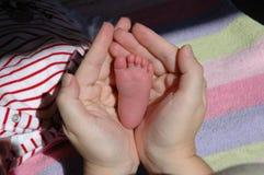 Kleiner Säuglingsfuß Stockbild