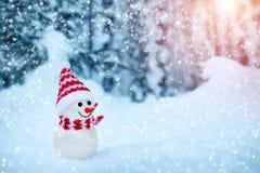 Kleiner Schneemann auf weichem Schnee im Wald Stockfotografie