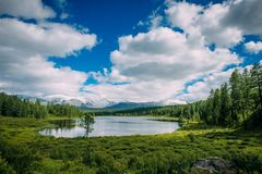 Kleiner See auf Gras und flaumigen Wolken über grünen Wiesen und schneebedeckten Spitzen Highland See, Altai, Sibirien lizenzfreies stockfoto
