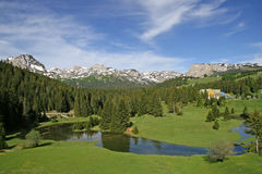 Kleiner See am Berg Stockbild