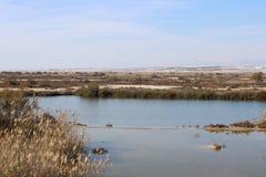 Kleiner See in der Trockenzone lizenzfreie stockfotografie