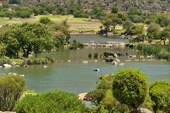 Kleiner See entlang dem Golfspielplatz in Sun City Stockfoto