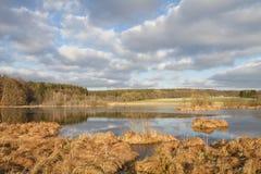 Kleiner See im Bayern, Deutschland Lizenzfreies Stockfoto