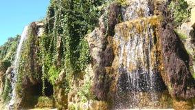 Kleiner See im Genoves-Park, Cadiz, Andalusien, Spanien stock video