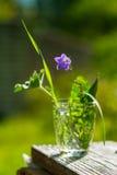 Kleiner Sommerblumenstrauß mit einer Glockenblume Stockfotos