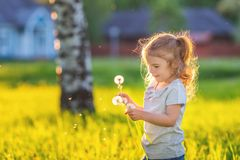 Kleiner sonniger Park des Mädchens im Frühjahr Stockbilder