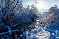 Kleiner Strom, der entlang schneebedecktes Holz am sonnigen Tag fließt stockbild