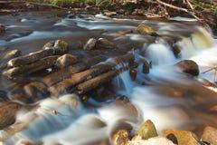 Kleiner Stromwasserfall im Wald Lizenzfreie Stockfotografie