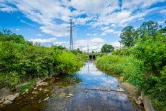 Kleiner Sugar Creek bei Elizabeth Park, in Elizabeth, Charlotte, N stockfotografie