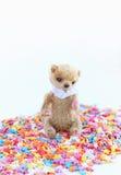 Kleiner Teddybär, der auf einem bunten Süßigkeitenbelag sitzt Weichzeichnung, heller Ton, Nahaufnahme Stockbilder