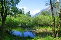 Kleiner Teich im Berg Stockfotografie